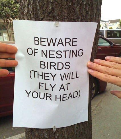 beware.jpg
